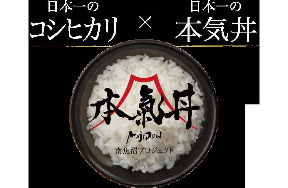 【公式】南魚沼、本気丼|日本一のコシヒカリ、日本一の大盛マジ丼