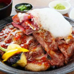 [:ja]肉の最高級×米の最上級 松阪牛・炭火焼きポーク・ローストビーフのしあわせ丼[:]